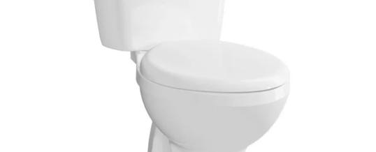 Jasa Service Toilet Duduk